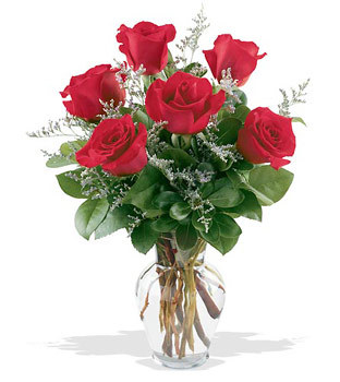 Ankara Sincan çiçek online çiçek siparişi  cam yada mika vazoda 6 adet kirmizi gül