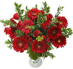 5 adet kirmizi gül 5 adet gerbera aranjmani  Ankara Sincan internetten çiçek siparişi