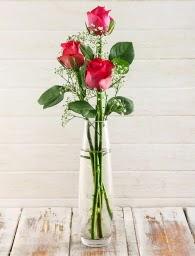 Cam içerisinde 3 kırmızı gül  Ankara Sincan çiçek siparişi sitesi