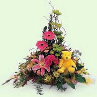 Ankara Sincan kaliteli taze ve ucuz çiçekler  lilyum gerbera oyuncak