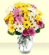 Ankara Sincan uluslararası çiçek gönderme  mevsim çiçekleri mika yada cam vazo