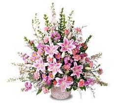 Ankara Sincan online çiçek gönderme sipariş  Tanzim mevsim çiçeklerinden çiçek modeli