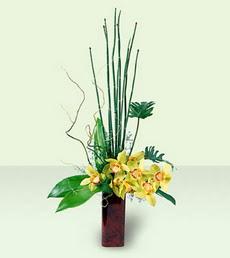 Ankara Sincan online çiçek gönderme sipariş   cam yada mika Vazoda dal orkide tanzim