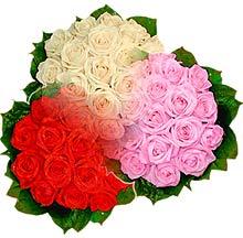 3 renkte gül seven sever   sincan çiçekçi Ankara Sincan internetten çiçek satışı