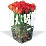 cam vazo içerisinde 11 gül   Ankara Sincan çiçek , çiçekçi , çiçekçilik
