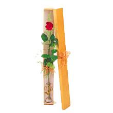 ince  kutuda  1  gül   Ankara Sincan ucuz çiçek gönder
