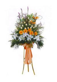 Ankara Sincan çiçek yolla , çiçek gönder , çiçekçi   Kazablanka, gerbera ve güllerle hazirlanmis ferfor