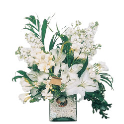 Ankara Sincan uluslararası çiçek gönderme  sadece beyazlardan olusmus mevsim cam yada mika tanzim