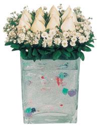 Ankara Sincan çiçek siparişi vermek  7 adet beyaz gül cam yada mika vazo tanzim