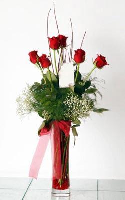 Ankara Sincan çiçek online çiçek siparişi  6 adet kirmizi gül ve cam yada mika vazo
