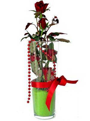 Çiçek siparişi Ankara Sincan anneler günü çiçek yolla  Cam yada mika içerisinde 9 adet kirmizi gül - sevdiklerinize özel