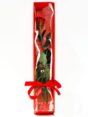 Sincan çiçek siparişi Ankara Sincan çiçek yolla  1 adet kutuda gül