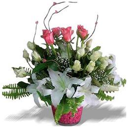 Ankara Sincan çiçek online çiçek siparişi  cam yada mika içerisinde 7 beyaz 6 kirmizi 1 dal kazablanka