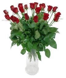 Ankara Sincan çiçekçi mağazası  11 adet kimizi gülün ihtisami cam yada mika vazo modeli