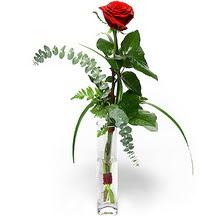 Ankara Sincan çiçek mağazası , çiçekçi adresleri  Sana deger veriyorum bir adet gül cam yada mika vazoda