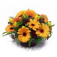 gerbera ve kir çiçek masa aranjmani  Ankara Sincan 14 şubat sevgililer günü çiçek