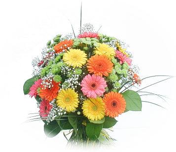 13 adet gerbera çiçegi buketi  Çiçek siparişi Ankara Sincan anneler günü çiçek yolla