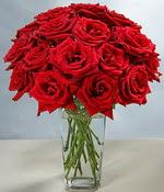Ankara Sincan online çiçek gönderme sipariş  Sevdiklerinize özel ürün 12 adet cam içerisinde kirmizi gül  Ankara Sincan internetten çiçek siparişi