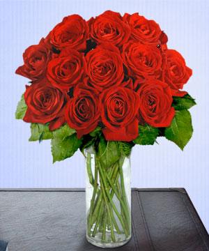 Anneme 12 adet cam içerisinde kirmizi gül  Ankara Sincan online çiçek gönderme sipariş