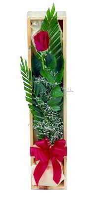 1 adet kutuda kirmizi gül  Ankara Sincan çiçek , çiçekçi , çiçekçilik