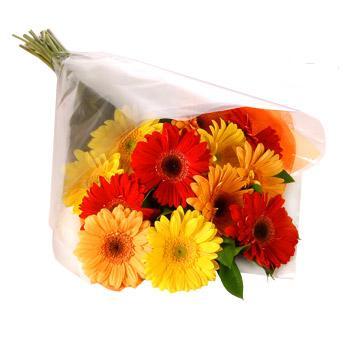 Karisik renklerde gerbera buketi  Ankara Sincan çiçek online çiçek siparişi