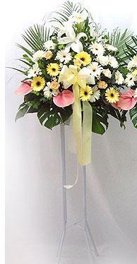Çiçek siparişi Ankara Sincan anneler günü çiçek yolla   perförje çiçegi dügün çiçekleri