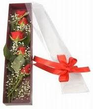 kutu içinde 5 adet kirmizi gül  Ankara Sincan uluslararası çiçek gönderme