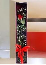 kutu içinde tek kirmizi gül  Ankara Sincan yurtiçi ve yurtdışı çiçek siparişi