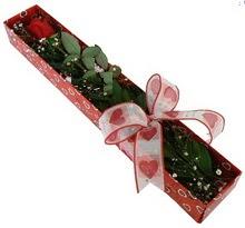 Tek kirmizi gül kutu içerisinde  Ankara Sincan çiçek gönderme sitemiz güvenlidir