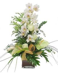 Ankara Sincan çiçek yolla , çiçek gönder , çiçekçi   cam vazo içerisinde 1 dal orkide çiçegi