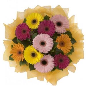 Online Ankara Sincan çiçek satışı  11 adet karışık gerbera çiçeği buketi