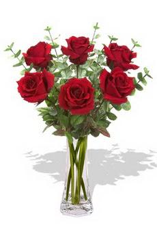 Ankara Sincan çiçek siparişi vermek  6 kırmızı gül vazosu