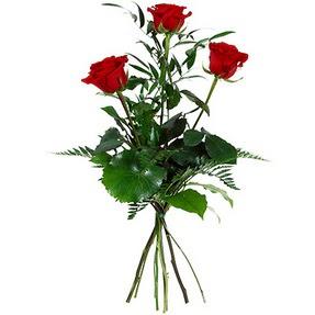 Ankara Sincan çiçek servisi , çiçekçi adresleri  3 adet kırmızı gülden buket