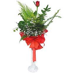 Ankara Sincan kaliteli taze ve ucuz çiçekler  Cam vazoda masum tek gül