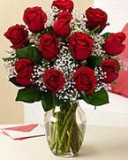 Sevgilime hediye 9 adet 1.ci kalite gül  Ankara Sincan kaliteli taze ve ucuz çiçekler