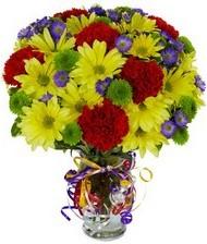En güzel hediye karışık mevsim çiçeği  Ankara Sincan internetten çiçek siparişi