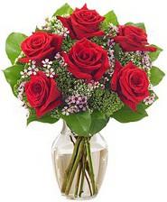 Kız arkadaşıma hediye 6 kırmızı gül  Ankara Sincan uluslararası çiçek gönderme