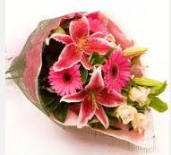 1 dal kazablanka ve mevsim çiçekleri  Ankara Sincan uluslararası çiçek gönderme
