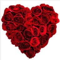 Ankara Sincan çiçek servisi , çiçekçi adresleri  19 adet kırmızı gülden kalp tanzimi