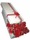 Ankara Sincan çiçekçi mağazası  11 adet 1.kalite magnum güller