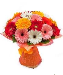 Renkli gerbera buketi  Ankara Sincan kaliteli taze ve ucuz çiçekler