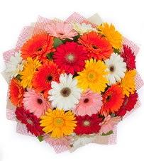 15 adet renkli gerbera buketi  Sincan çiçek siparişi Ankara Sincan çiçek yolla