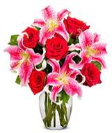 Vazoda 5 adet kırmızı gül 2 dal kazablanka  Ankara Sincan çiçek siparişi vermek