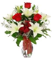 5 adet kırmızı gül ve 1 dal kazablanka  Ankara Sincan online çiçek gönderme sipariş