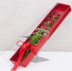 Kutu içerisinde 3 adet kırmızı gül  Çiçek siparişi Ankara Sincan anneler günü çiçek yolla
