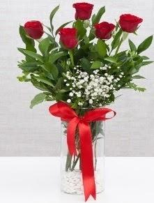 cam vazo içerisinde 5 adet kırmızı gül  Ankara Sincan çiçek online çiçek siparişi