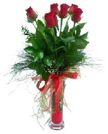 vazo içerisinde 5 kırmızı gül  Ankara Sincan çiçek gönderme sitemiz güvenlidir