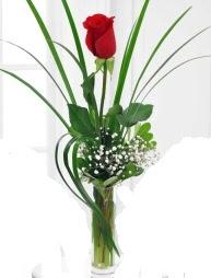 Cam içerisinde 1 kırmızı gül  Ankara Sincan çiçek , çiçekçi , çiçekçilik