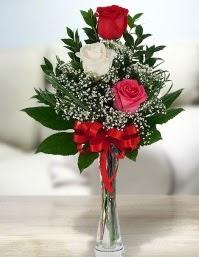 Camda 2 kırmızı 1 beyaz gül  Online Ankara Sincan çiçekçiler