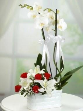 2 Dallı beyaz orkide 5 kırmızı gül ve 3 kazablanka
